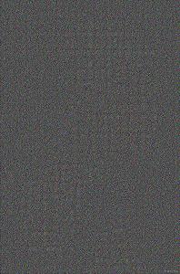 キャリアスクリーン画像(写楽・RGB)